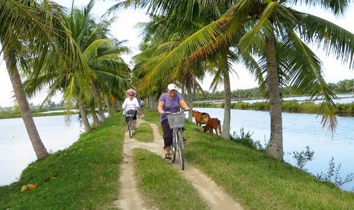 Riding bicycle around Hoi An