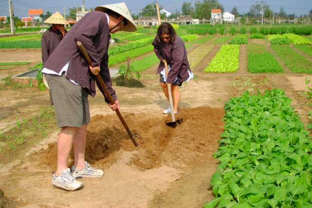 tra que vegetable village - hoian services
